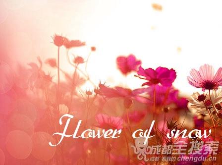 Flower of snow (4).jpg